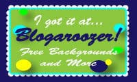 blogaroozer-badge-8780248